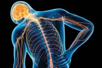 Discover Your Body's Power to Overcome Physical Pain